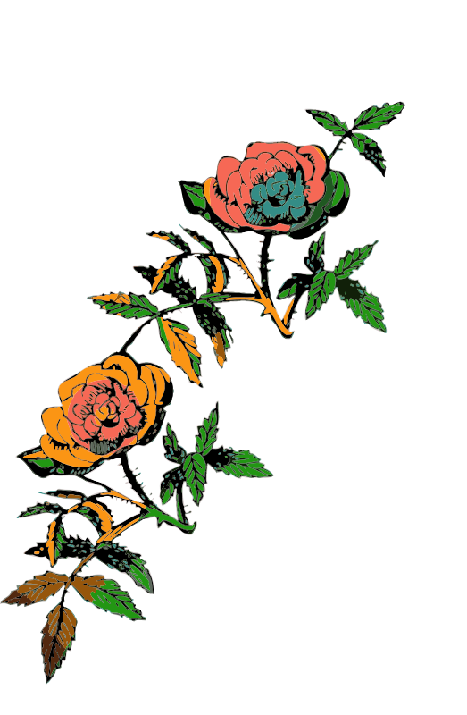 Free Rose decoration in color