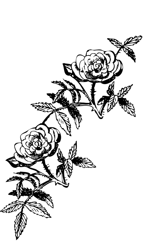 Free Rose decoration