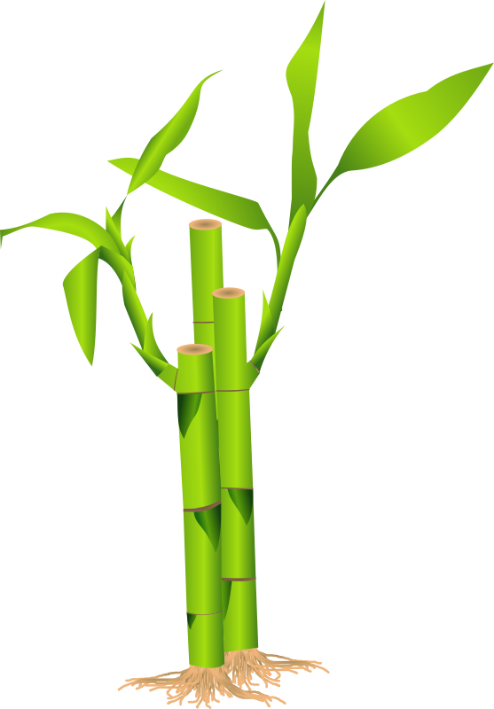 Free Bamboo