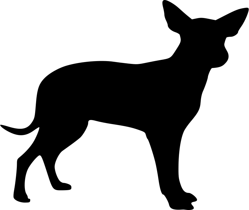 Free Xolo silhouette