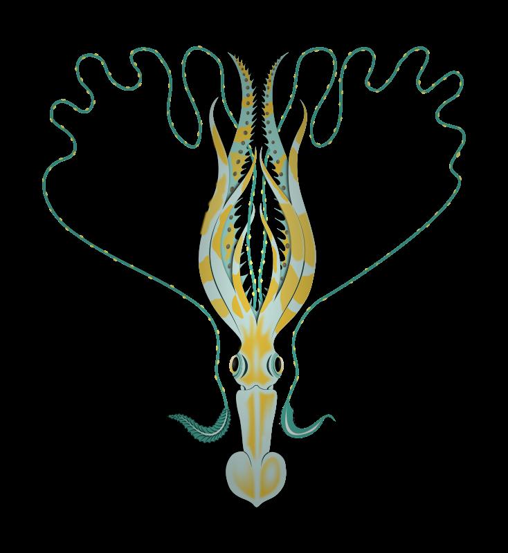 Free Squid
