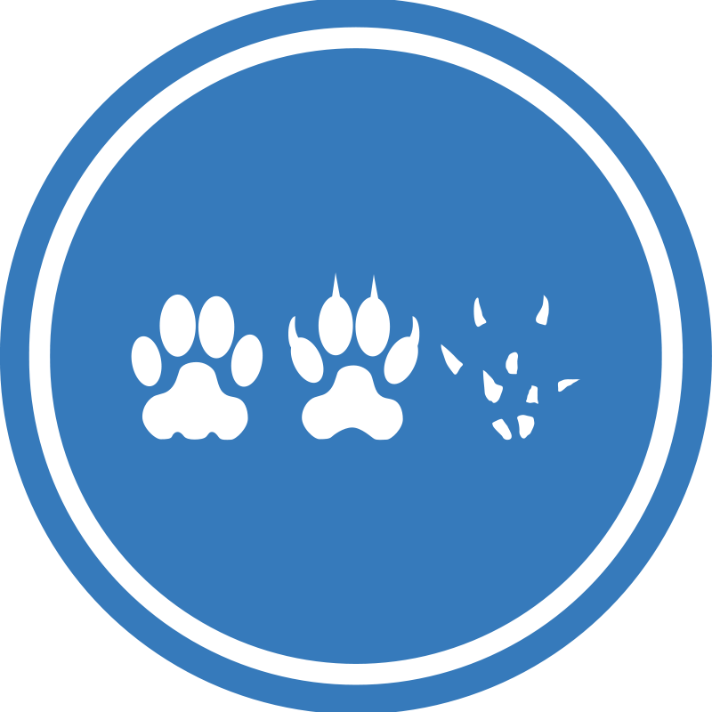 Free Cat-Dog-Mouse Unification Peace Logo
