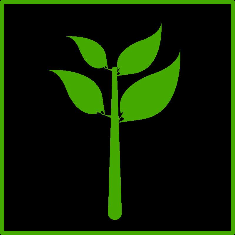 Free eco green plant icon