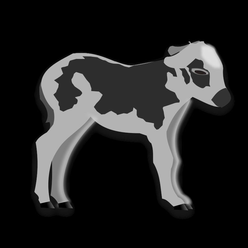 Free calf