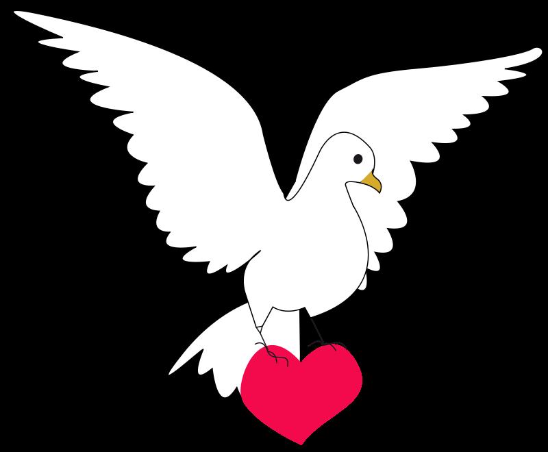 Free Colombe de la paix