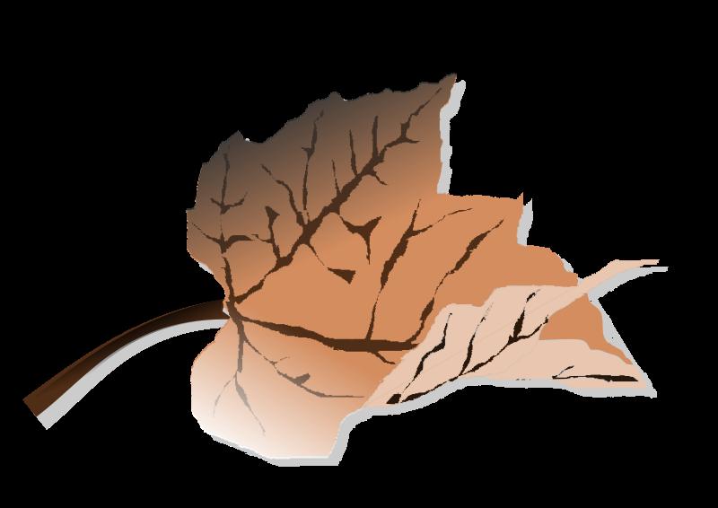 Free Brown leaf