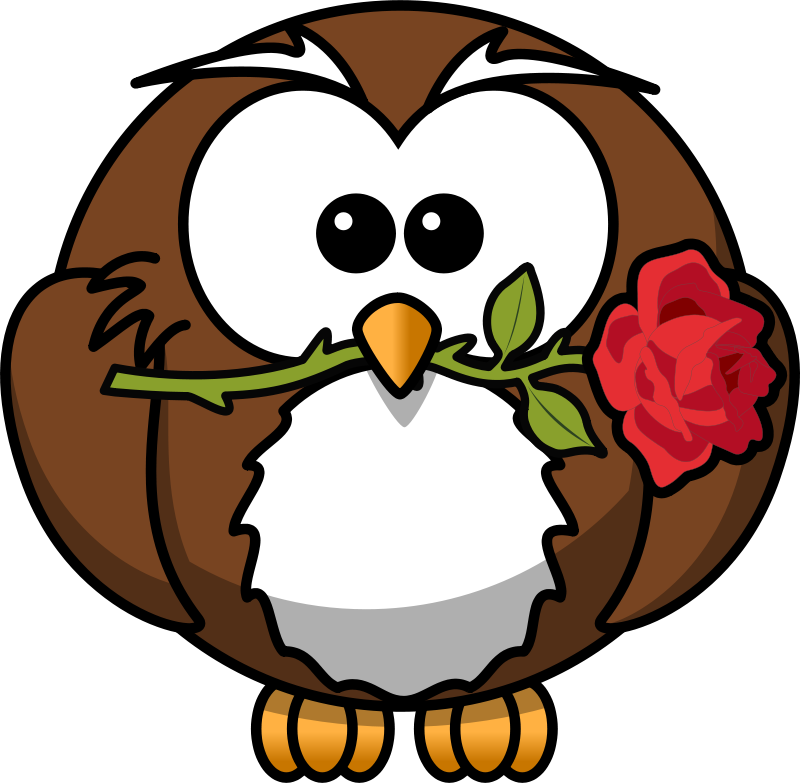 Free Owl with rose