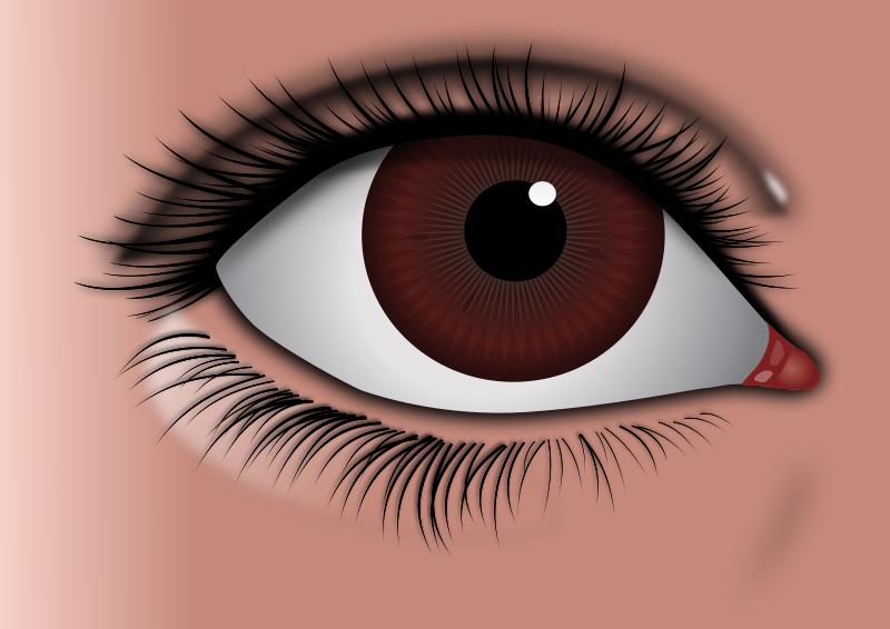 Free Realistic Brown Eye