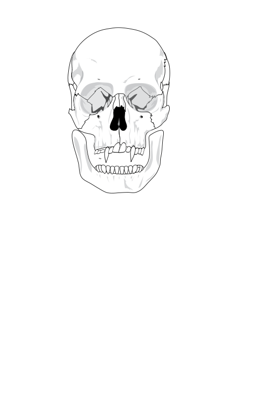 Free evil skull