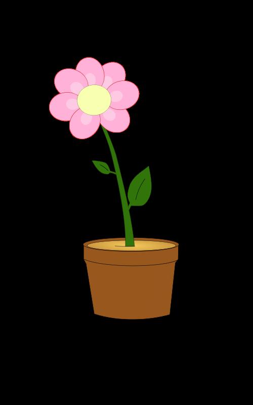 Free Blumentopf