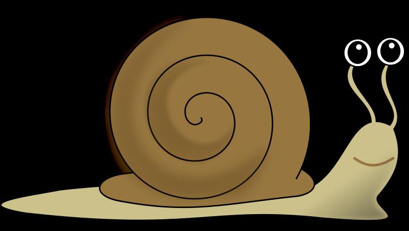 Free snail-escargot-decroissance