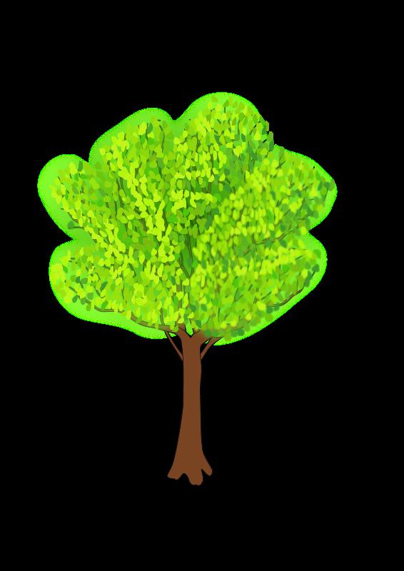 Free tree in summer