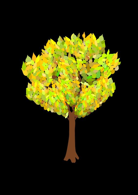 Free tree in autumn
