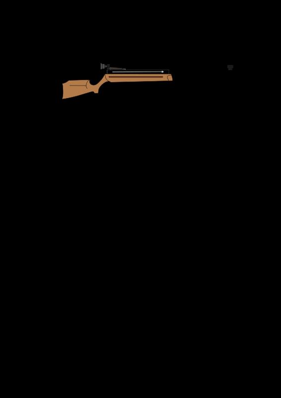 Free air rifle
