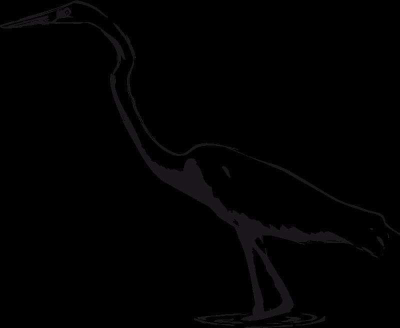 Free Great Egret