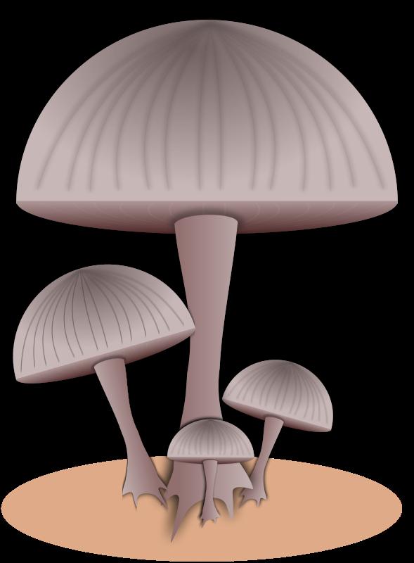 Free Mushroom