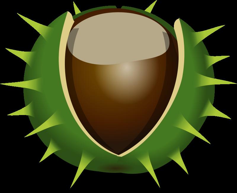Free Chestnut