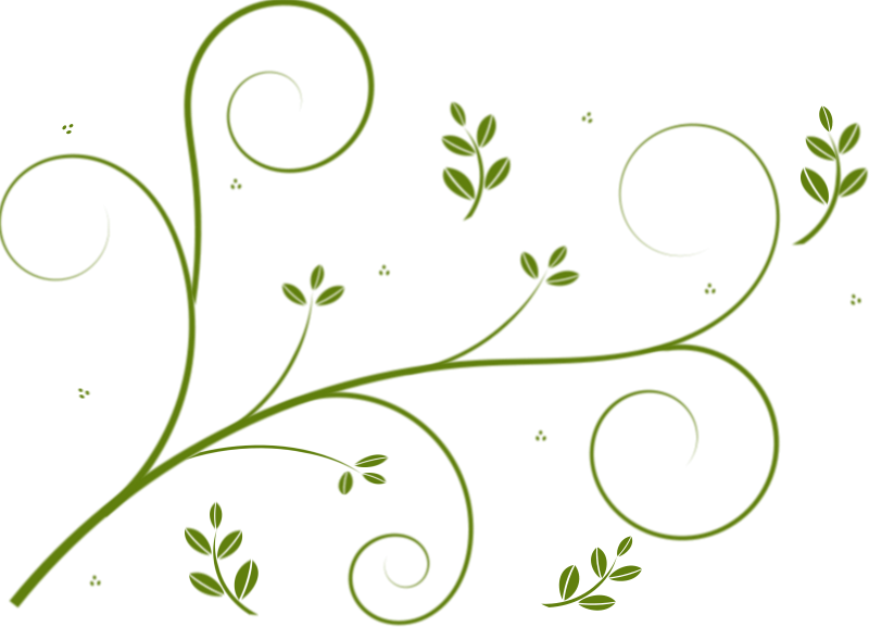 Line Art Vector Design Png : Free clipart winding lines and leaves eggib
