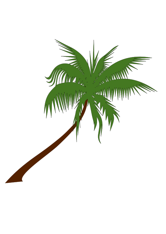 Free Clipart: Palm tree | newt