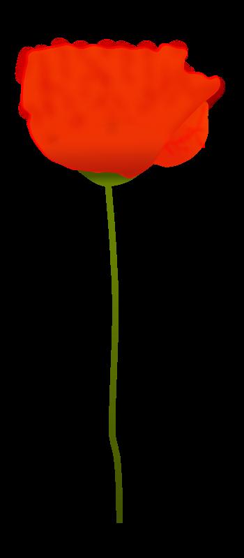 Free Clipart Poppy Flower Pupsik