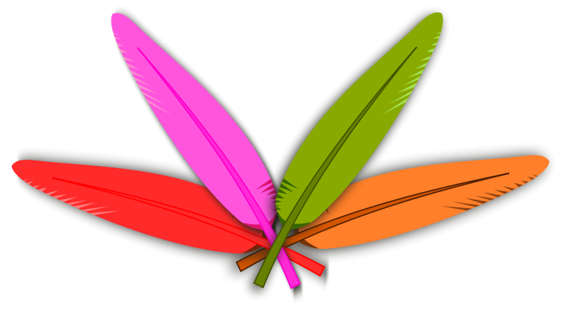 Free Colored Feather