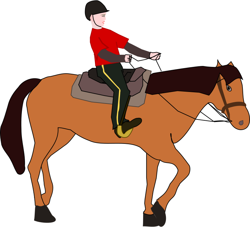 Free Horse Riding Lesson