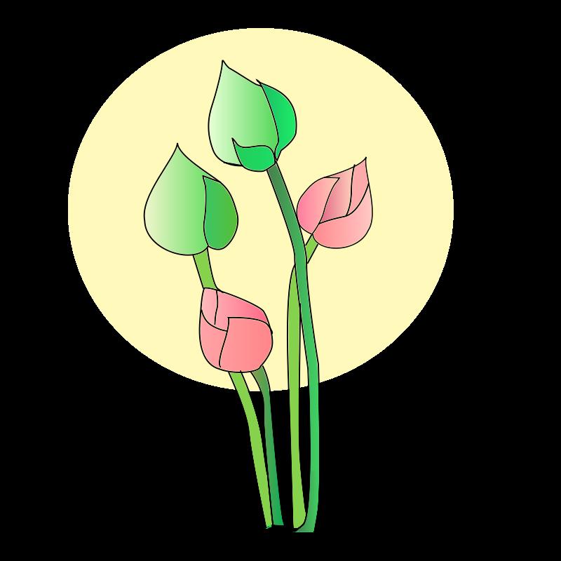Free Clipart: Lotus | chikiyo
