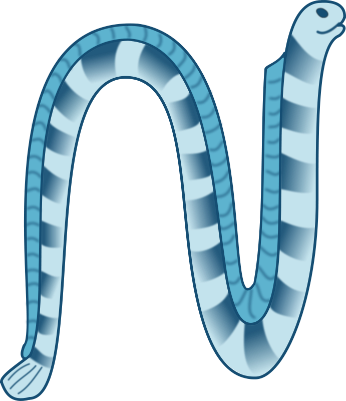 Free Sea snake