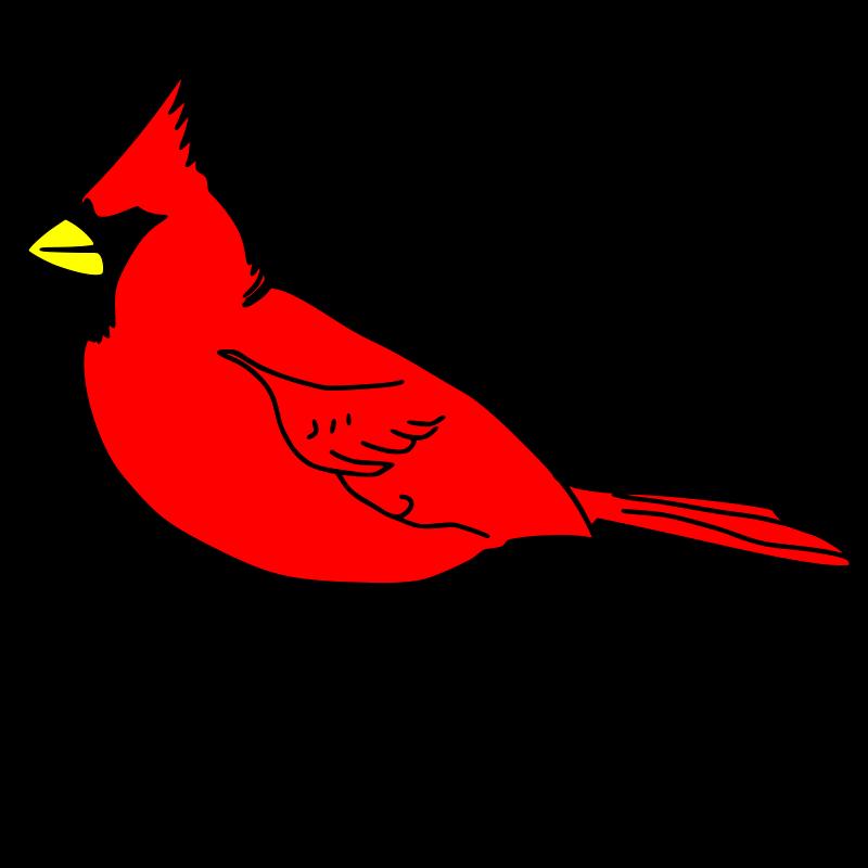 Free cardinal remix 1