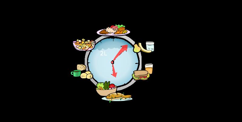 Free horário das refeições