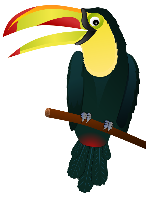 free clipart toucan gnokii rh 1001freedownloads com toucan clipart images toucan clip art for kids