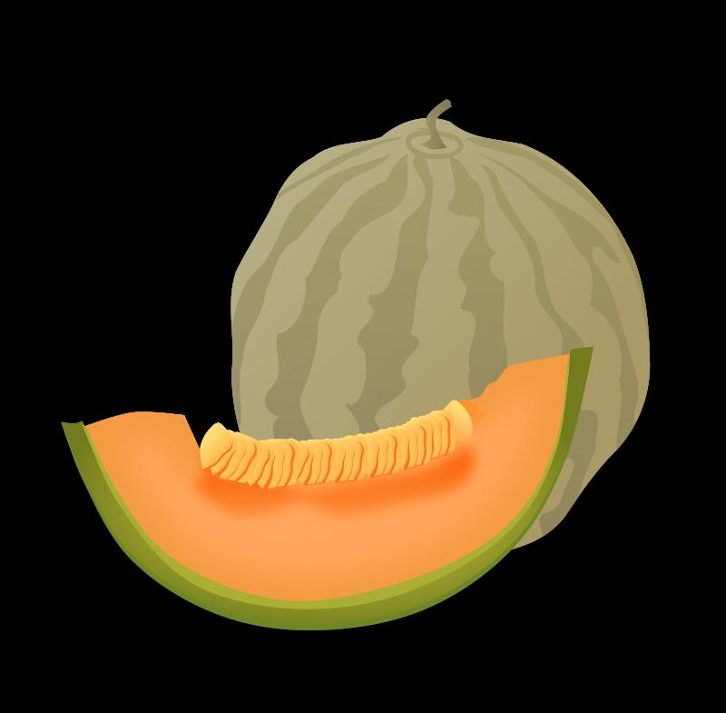 Free Musk Melon