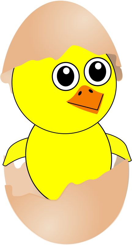 Free Funny Chick Cartoon Newborn Coming Out from the Egg with a Eggshell hat