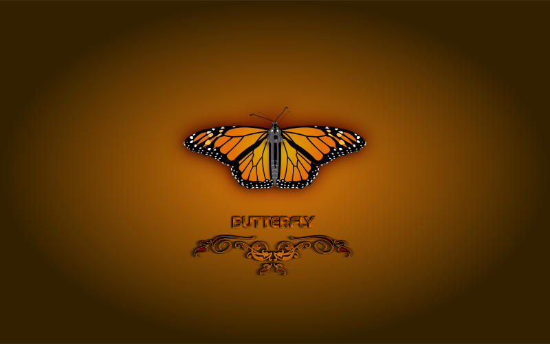 Free Butterfly (Wallpaper)