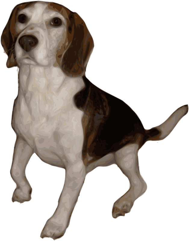 Free Beagle Small Version