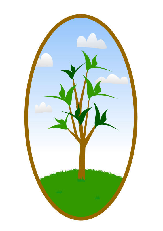 Free Oval Tree Landscape
