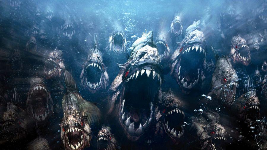 Free Wallpapers: Piranhas Attacking Wallpaper | Movies