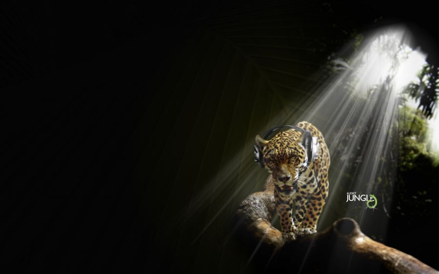 Free Wallpapers: Illustrated Leopard Listening to Music | Animals