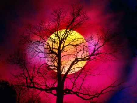 Free Colorful Night Sky