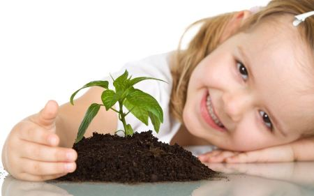Free Toddler and Plant