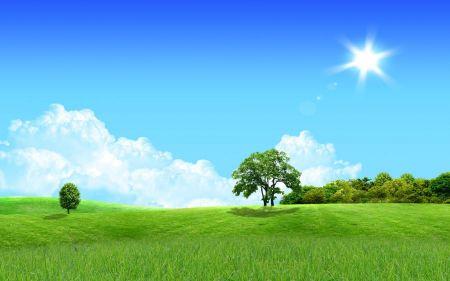 Free Lovely Landscape