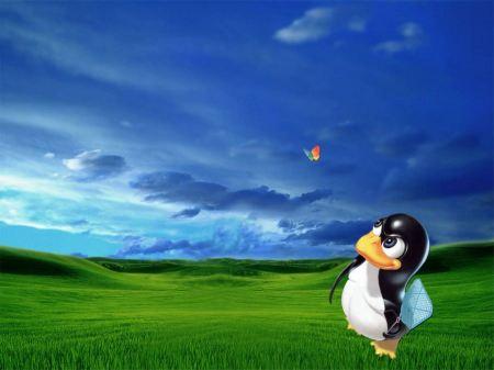 Free Linux Hunting Windows
