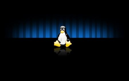 Free Linux Penguin Widescreen