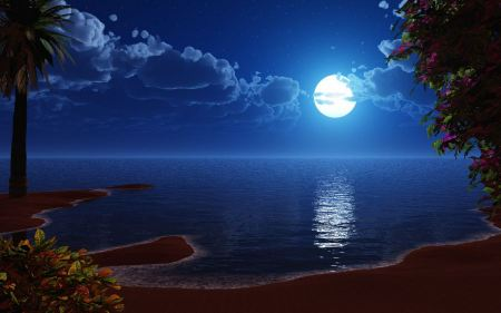 Free Beauty of Moon