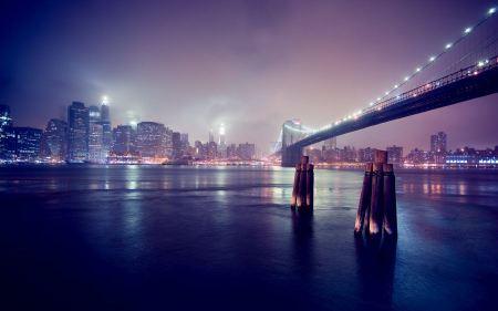 Free City Nights & Lights