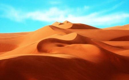 Free The Desert