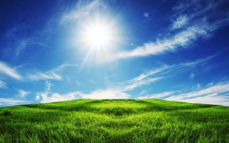 Free Sun Shining on Pasture Wallpaper
