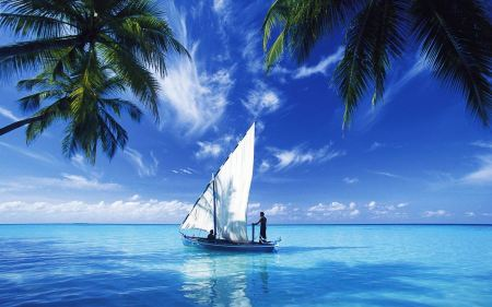 Free Sailing Over Indian Ocean
