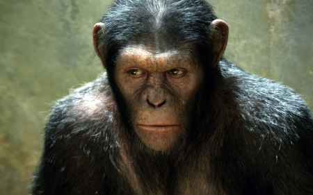 Free Rise of the Planet of the Apes Monkey