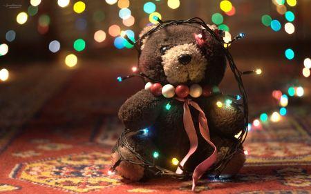 Free Adorable Teddy Bear